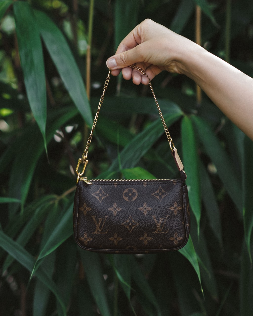 Louis Vuitton Mini Pochette Accesoires Monogram Canvas